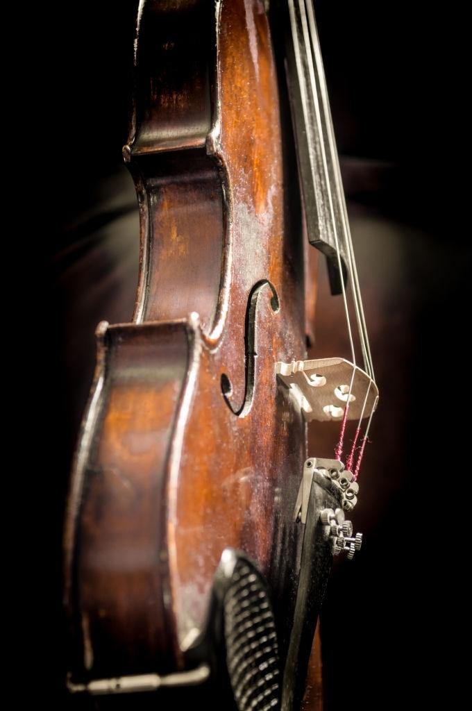 violin1 1
